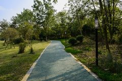 Shady path on slope in plants of sunny winter afternoon. Shady path on the slope in plants and trees of sunny winter afternoon,Chengdu,China royalty free stock photo