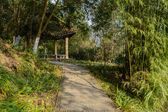 Shady path to Chinese gazebo in sunny winter afternoon Stock Photography
