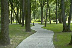 The shady paths. Stock Photo