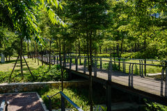 Shady planked footbridge in verdant city of sunny summer Royalty Free Stock Image
