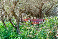 Shady resting spot at the Afrikaans Language Monument Stock Images