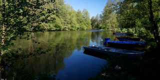 Shady River Stock Image