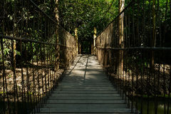 Shady suspension bridge in sunny summer afternoon Royalty Free Stock Images