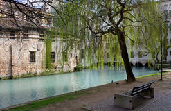 Shady Walkway in Treviso Stock Photos