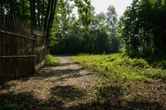 Shady wayside bamboo fence in sunny summer morning Royalty Free Stock Photography