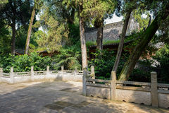 Shady yard with balustrade before ancient Chinese building in wo Royalty Free Stock Photography