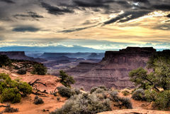 Shafer峡谷在峡谷地国家公园俯视 免版税库存照片