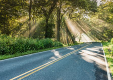Shafts of Light in Fog on Country Road Stock Photo