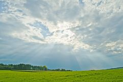 Shafts of sunlight. On a green meadow Royalty Free Stock Photos