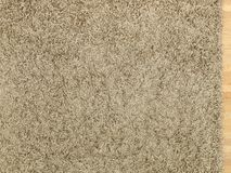 Shag Carpet Royalty Free Stock Photos