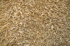 Shaggy рогожка связанная от старого крупного плана листьев мозоли, Болгарии стоковое изображение rf