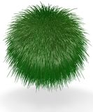 Shaggy Ball of Grass Royalty Free Stock Image
