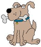 Shaggy dog. Illustration of an isolated Shaggy dog holding a bone stock illustration