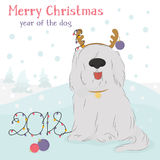 Shaggy dog with a decorative reindeer and Christmas balls. Christmas card with large, shaggy dog breed Bobtail with decorative reindeer and Christmas balls on a Stock Photo