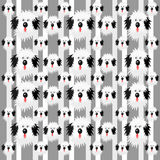 Shaggy dog pattern Stock Photo