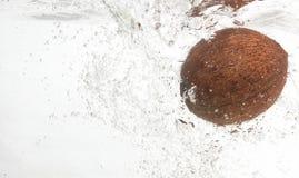 Shaggy, geschmackvolle Kokosnuss im Wasser. Lizenzfreies Stockfoto