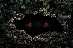 Shaggy monster red eyes closeup Royalty Free Stock Photo