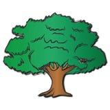 Shaggy Oak Tree. A shaggy oak tree that looks as if it is being rifled by a westward breeze stock illustration