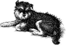 Shaggy stray dog. Vector drawing of a mongrel lying on the street Royalty Free Stock Photo
