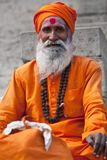 Shaiva sadhu (holy man) Stock Photography
