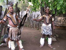 SHAKALAND,南非-大约2011年11月:未认出的祖鲁族人战士舞蹈家 免版税图库摄影