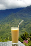 shake мангоа Стоковое Фото