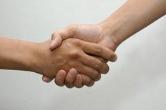 shake руки Стоковое фото RF