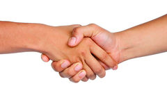 Shake hand Royalty Free Stock Images