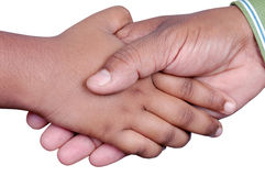 Shake hands. Isolated on white background Royalty Free Stock Images