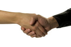 Shake Hands. Man and woman shake hands Stock Images