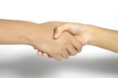 Free Shake Hands Stock Photo - 46719000