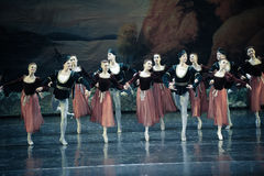 Shake handshandle dance-ballet Swan Lake Royalty Free Stock Photography
