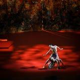 Shake off-Modern Ballet:Trollius chinensis Stock Images