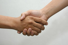 shake ręce Zdjęcie Royalty Free