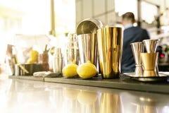 Shaker i en bar royaltyfria foton