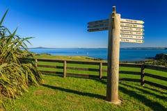 Shakespear Regionaal Park, het Gebied van Auckland, Nieuw Zeeland Royalty-vrije Stock Afbeelding