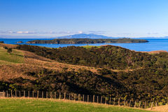 Shakespear Regionaal Park, het Gebied van Auckland, Nieuw Zeeland stock foto's