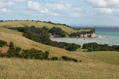 Shakespear Regional Park in New Zealand Royalty Free Stock Image