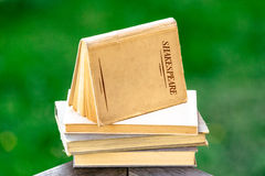 Shakespeare Books Piled Up Royalty Free Stock Image