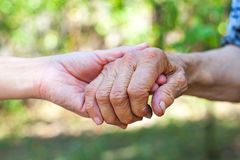 Shaking elderly hand. Close up elderly female`s shaking hand held by young carer`s hands outdoor Stock Photography