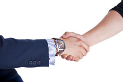 Shaking hand with a client Royalty Free Stock Image