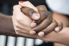 Free Shaking Hands Stock Photography - 18428612