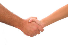 Free Shaking Hands Royalty Free Stock Photography - 4305767