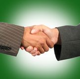 Shaking hands. Two elegant businessman shaking hands Royalty Free Stock Photography