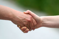 Shaking hands. With white and green background Stock Photography