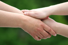 Shaking hands. With white and green background Royalty Free Stock Photos