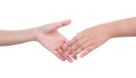 Shaking hands of two female people on white background Royalty Free Stock Image