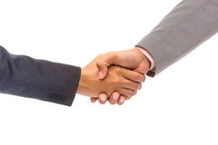 Shaking hands of two people Royalty Free Stock Photo