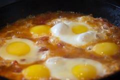Shakshouka - fried eggs with tomatoes, Israeli national dish. Royalty Free Stock Photos