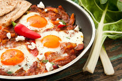 Shakshouka. Or shakshuka is a dish of eggs poached in a sauce of tomatoes, chili peppers, and onions, spiced with cumin. This recipe includes swiss chard leaves Royalty Free Stock Photos